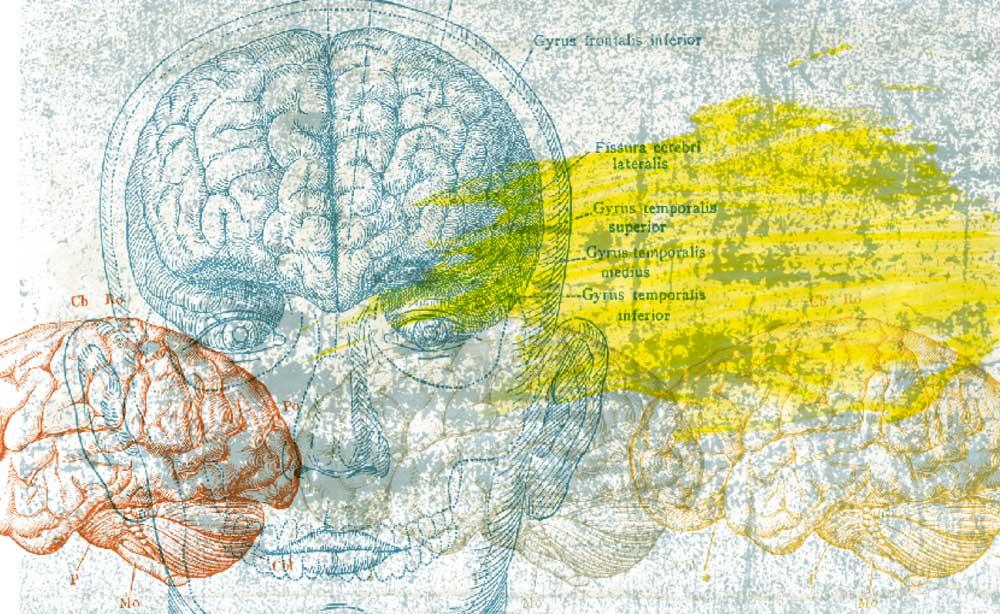 Lavado de cerebro