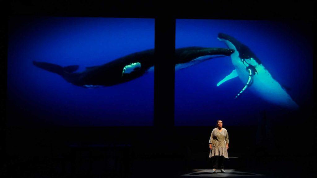 De ballenas, misterios y humanidad