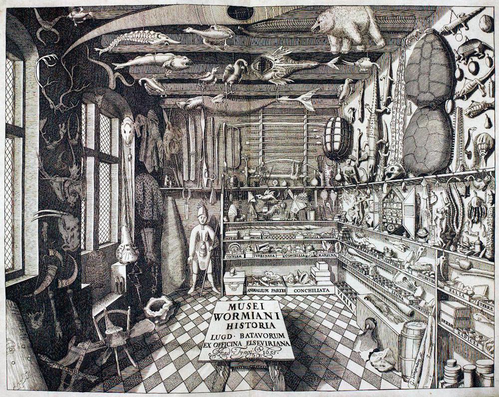 El gabinete de curiosidades