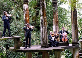 cuarteto_latinoamericano_4-850x564