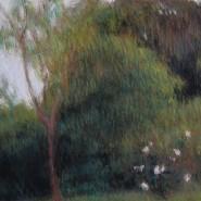 nocturnos-antonia-daiber-185x185