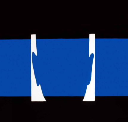 Edición Nº85 – Agosto 2017